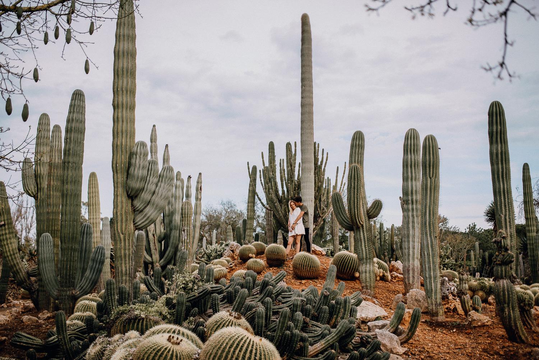 mallorca spanischer fotograf